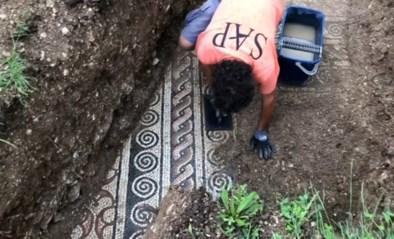Eeuwenoude Romeinse mozaïekvloer ontdekt na jaren onder wijngaard verborgen te liggen