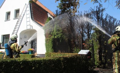 "Brandende haag bedreigt woning na verdelgen onkruid met gasbrander: ""Code oranje geldt ook voor je tuin"""