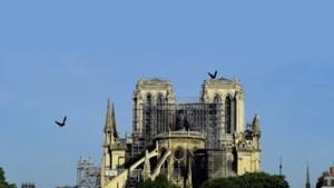 Plein voor Notre-Dame in Parijs gaat zondag opnieuw open