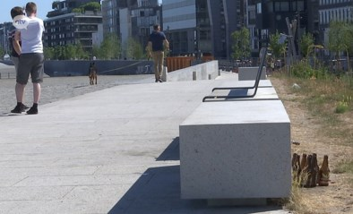 Antwerpse Scheldekaaien en parken liggen vol zwerfvuil