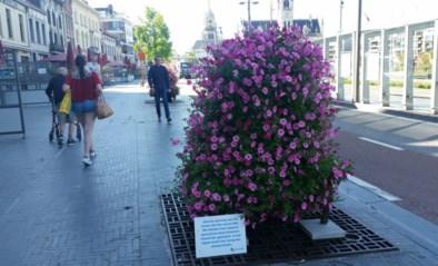 Bloemen vervangen tijdelijk bomen