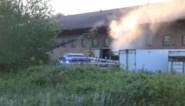 Brandweer blust brand in vetverwerkend bedrijf