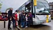 Turnhoutse buslijnen 1 en 2 rijden binnenkort volledig elektrisch: primeur voor stad
