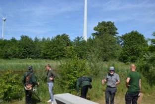 """Evergem moet het meest ophoesten voor onderhoud natuurgebied: """"En het bedrag gaat crescendo"""""""