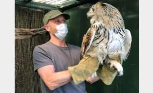 """Dierenopvangcentrum kreunt onder plaats- en geldgebrek: """"Dieren vallen elkaar aan. Ik overweeg ermee te stoppen"""""""