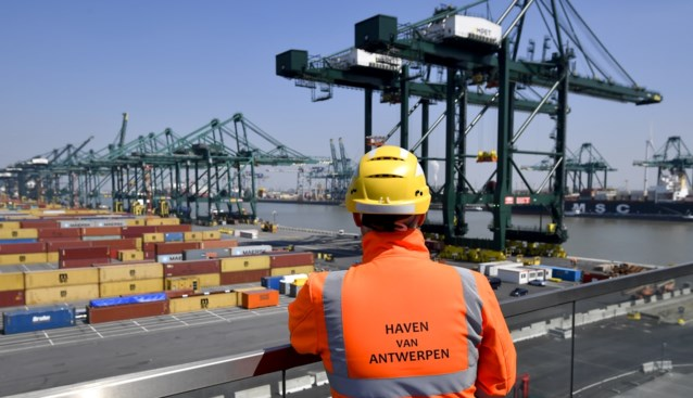 """Antwerpse haven blijkt ook draaischijf voor illegale pesticiden: """"Pakkans is lager dan voor drugssmokkel"""""""