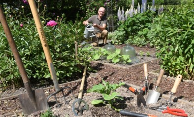 Voor elk beetje tuinieren heb je gereedschap nodig, maar welke spullen zijn écht onmisbaar voor een mooie tuin?