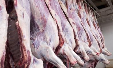 Al vaker broeihaard van virus: moeten we de vleessector proactief screenen?