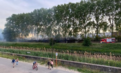 Brandweer moet opnieuw uitrukken voor natuurbranden