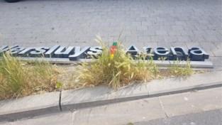 """Bouwgroep Versluys verwijdert letters van stadion KVO: """"Miljoenen geïnvesteerd en nu respectloos behandeld"""""""