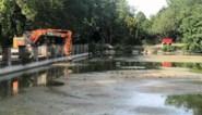 Vijver abdijpark wordt leeggepompt, Anne Marie hoopt dat zo haar lang geleden verloren ring opduikt