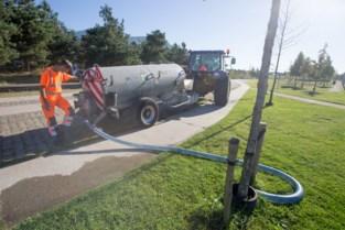 Groendienst pompt grondwater op voor het begieten van planten