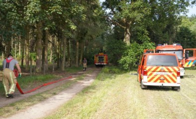 Brand verwoest chalet en auto in bos
