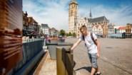 """Dijlestad verwijdert 315 vuilnisbakken uit straatbeeld: """"En ze puilden al uit"""""""