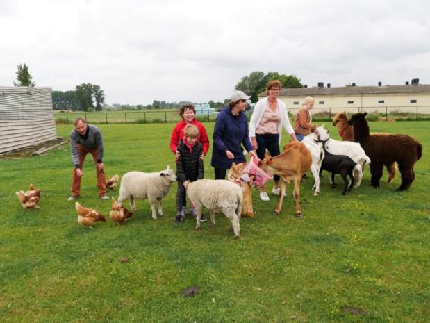 """Crisis treft ook kinderboerderijen: """"Minder inkomsten maar dieren moeten wel blijven eten"""""""
