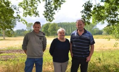IJsboerderij stelt wei open voor kampen