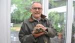 Ontsnapte schildpad is terecht en krijgt nieuwe naam, dankbaar baasje trekt meteen portefeuille open