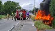 Auto brandt uit na ongeval