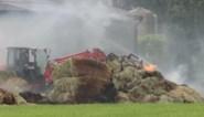 Hooi vat vuur in loods: brandweer krijgt hulp van boeren
