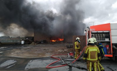 Hevige brand in loods Sint-Eloois-Winkel, alle materiaal verloren