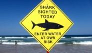 Surfer overlijdt na aanval haai voor Australische oostkust