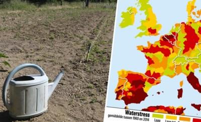 """Vlaanderen is even droog als Zuid-Spanje: """"We kennen de oplossing, maar we handelen te traag"""""""