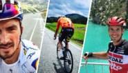 Iedereen naar de bergen: waarom voltallig wielerpeloton eerstdaags alweer op hoogtestage vertrekt