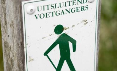 """Herselt opent zaterdag Elsschotwandeling in de bossen van Blauberg: """"We willen mensen het oeuvre van Willem Elsschot tonen"""""""