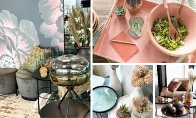 Nieuwe webwinkel zet Belgisch design centraal