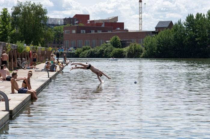 Extra waarschuwingen bij Houtdok houden zwemmers niet tegen