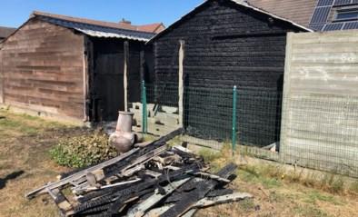 Twee tuinhuizen vatten vuur, schade is groot