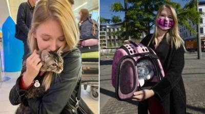 Na geheime onderhandelingen: katje Lee is op het vliegtuig naar Peru gezet om over anderhalve maand weer naar België te komen