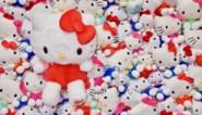 Goodbye Kitty: de man die 's werelds kleinste katje groot maakte, gaat met pensioen en laat een haperend merk achter