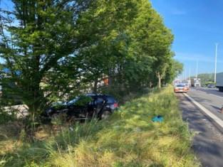Auto belandt tegen boom langs E313 in Wommelgem