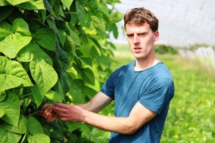 """Land- en tuinbouwers willen graag heropstarten: """"Je mag het belang van boerenmarkten niet onderschatten"""""""