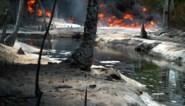 """Rapport: """"Shell faalt ernstig bij opruimen olieramp Nigeria"""""""