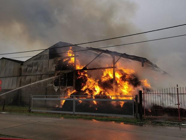 "Hulpdiensten hele dag in weer met zware loodsbrand met tientallen ton stro: ""Wie verbrand stro of roet vindt raakt die best niet aan"""