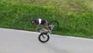En u dacht dat Peter Sagan een artiest was op de fiets! Bekijk dan even de beelden van deze Italiaanse acrobaat
