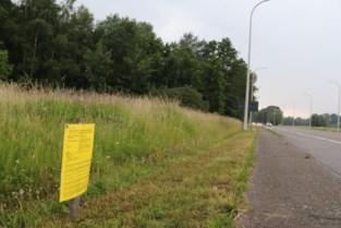 Aanvraag voor 133 woningen langs gewestweg Hasselt-Diest