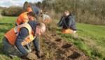 Twaalf landbouwers maken boerderij aantrekkelijker voor wilde dieren