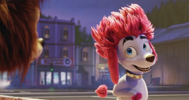Maya de Bij en Wickie de Viking krijgen concurrentie van... een roze poedel: Studio 100 lanceert nieuwe film (en straks ook tv-reeks)