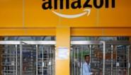 Amazon lanceert klimaatfonds van 2 miljard dollar