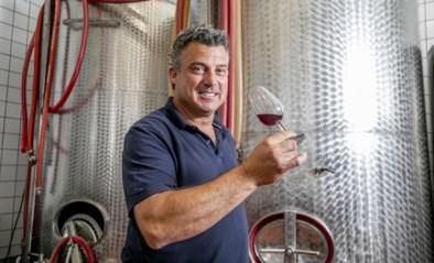 """Wijnboer Jan Willekens wacht op partij nieuwe flessen uit Duitsland: """"Impact van koop lokaal doet deugd"""""""