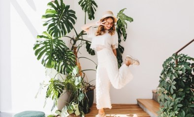 Zo bescherm je jouw geliefde kamerplanten het best tijdens een hittegolf