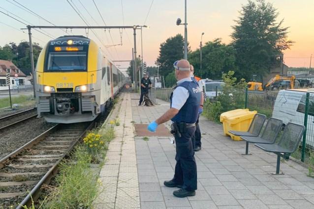 Tientallen transmigranten opgepakt op trein richting Beervelde