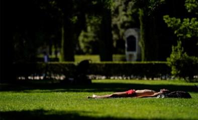 Zonnig en zeer warm weer: temperaturen tot 31 graden