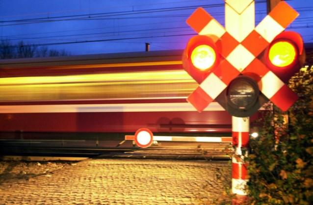 Bronstige dieren goed voor 23.000 minuten vertraging op de trein