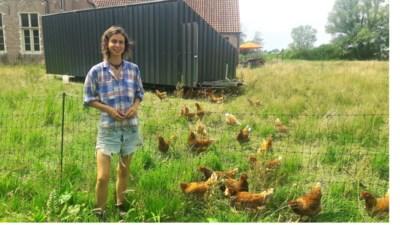 Opvallende 'Kippencaravan' is start nieuwe bioboerderij in Schelle