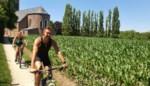 """'Bouwstop' in landelijk Merelbeke: """"Nog voldoende plaats in het centrum"""""""