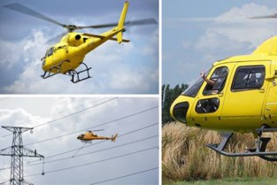 Helikopter trekt draden voor sterkere hoogspanning in de Polder